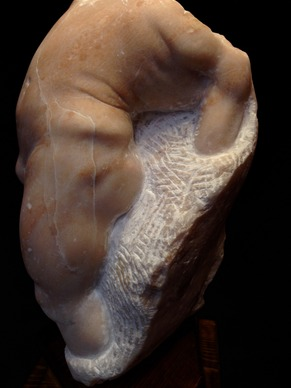 G.Giarrizzo. Descesa della Vita (Detail 3). 2016. Chisel-hammer carved alabaster. 18x8x8in.
